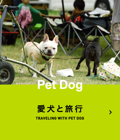 愛犬と旅行 TRAVELING WITH PET DOG